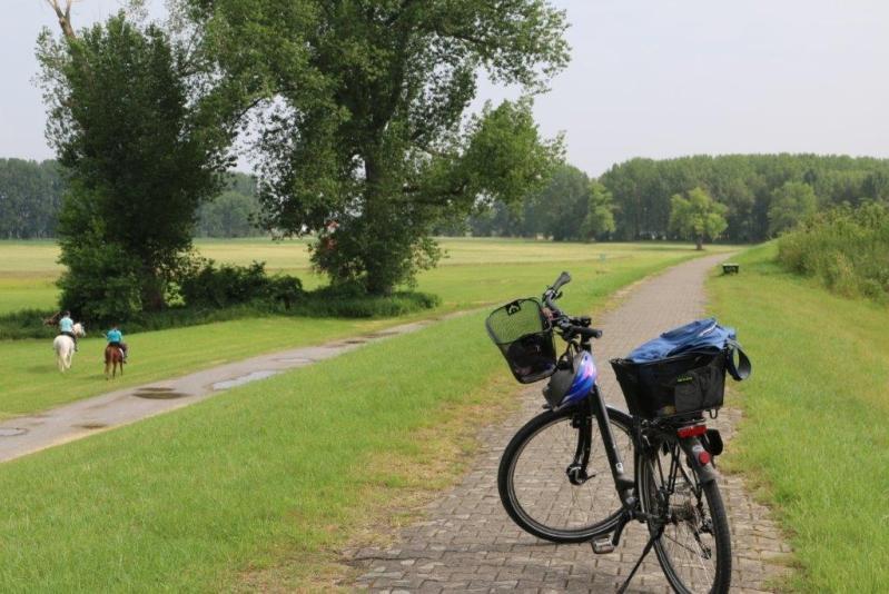 Radtour - Links und rechts den Rhein entlang