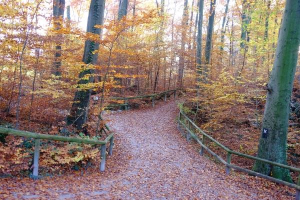 Wandertag - Rund um die Sengbachtalsperre